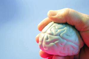 Danish researchers map out new brain mechanism